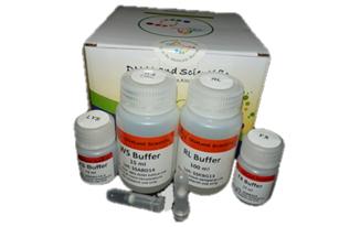 genomic-DNA-isolation-kit