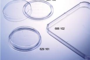 square-petri-dish-greiner-120x120x17mm
